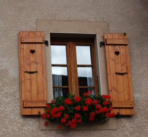 Window shutters and planter