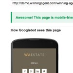 Did you know that you need to pass the Google Mobile-Friendly test?