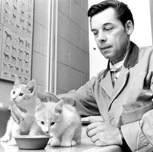 Joseph Clauthier feeds two kittens April 30 1969