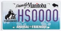 WHS Licence Plate