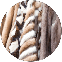 cat-and-dog-fur