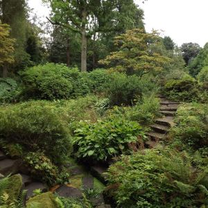Japanese Bridge and Rock Garden, 6th August 2016, Winterbounre House and Garden, Digging for Dirt