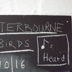 Chalk board, Winterbourne House and Garden, Digging for Dirt