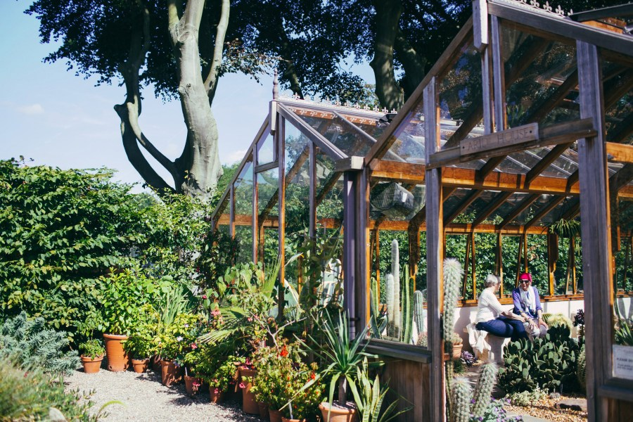 Sitting in the glasshouse at Wiinterbourne House and Garden.