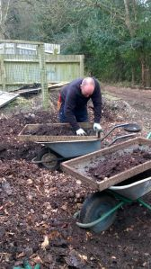 Riddling compost before mulching, Winterbourne House and Garden, Digging for Dirt