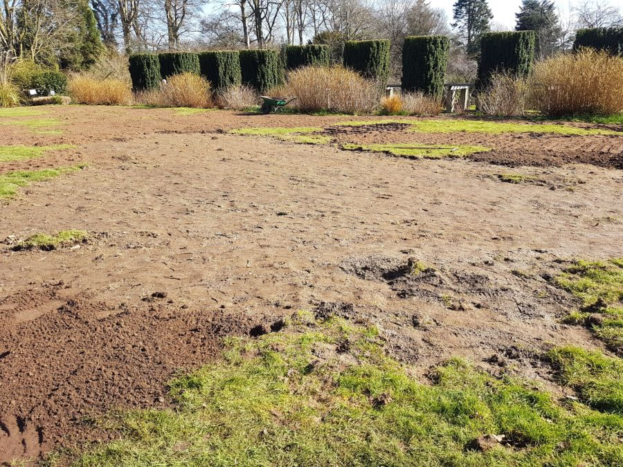 Badger damage on the Top Lawn, photograph by Chris Howell, Winterbourne House and Garden, Digging for Dirt