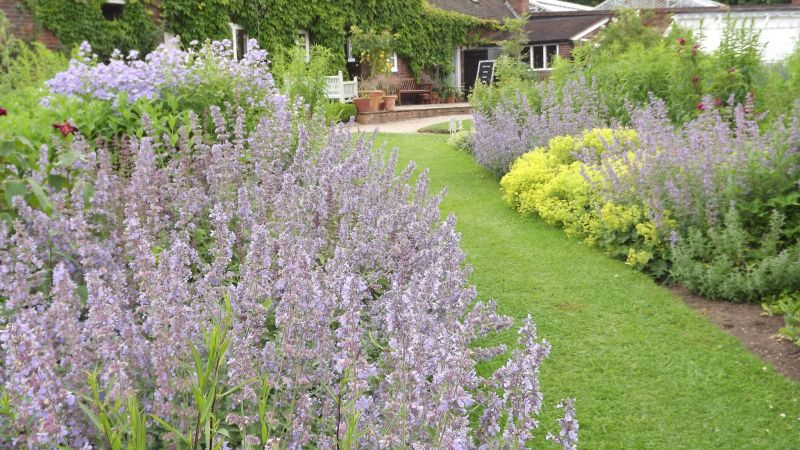 Walled Garden, Monthly Masterclass: June, Winterbourne House and Garden, Digging for Dirt