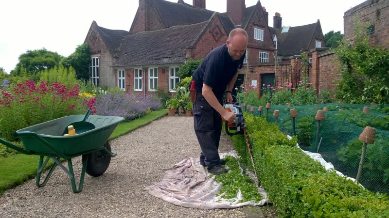 Cutting box hedging, Winterbourne House and Garden, Digging for Dirt