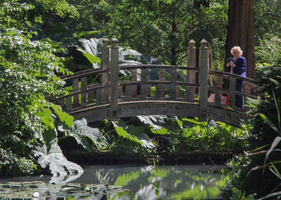 The Japanese Bridge, photograph by Alice Whitehouse. Digging for Dirt, Winterbourne House and Garden