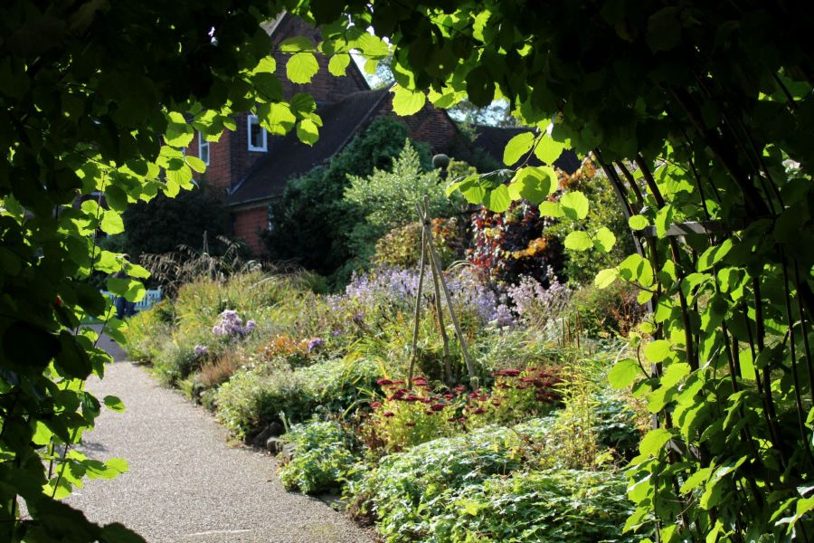 The Pink and Blue Border, photograph by Peter Leadbetter, Snapshot, Winterbourne House and Garden, Digging for Dirt