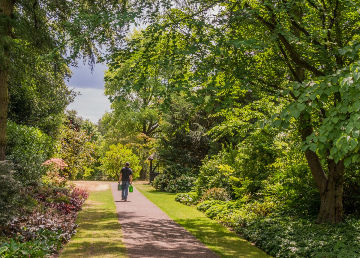 The Broad Walk, photograph by Peter Toolan, Snapshot Peter Toolan,, Winterbourne House and Garden, Digging for Dirt