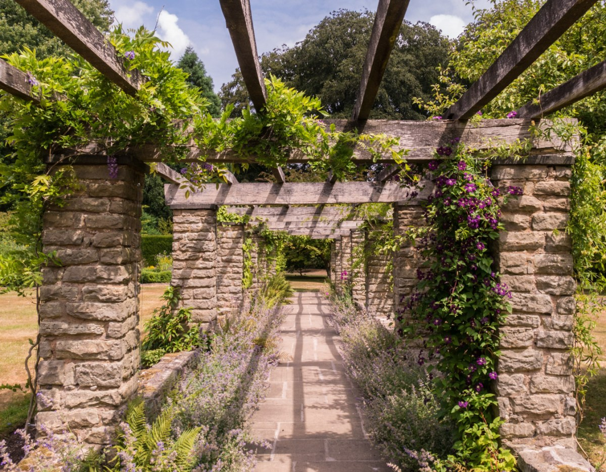 The Pergola, photograph by Peter Toolan, Snapshot Peter Toolan,, Winterbourne House and Garden, Digging for Dirt