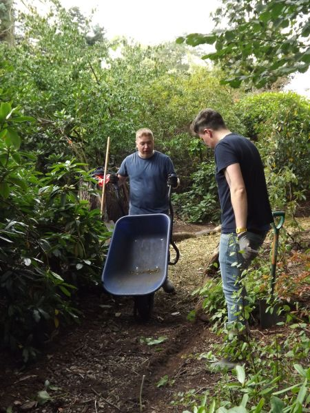 Volunteers from Virgin Media helping to create a new bark path in the Rhododendron Walk, The Week That Was, Winterbourne House and Garden, Digging for Dirt