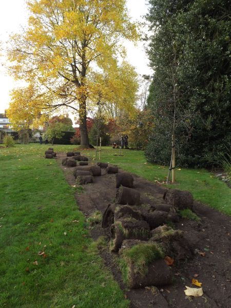 Turf-lifting underway on the Arboretum Lawn, The Week That Was, Winterbourne House and Garden, Digging for Dirt