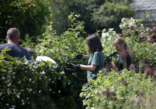 Practical students at work in the teaching garden