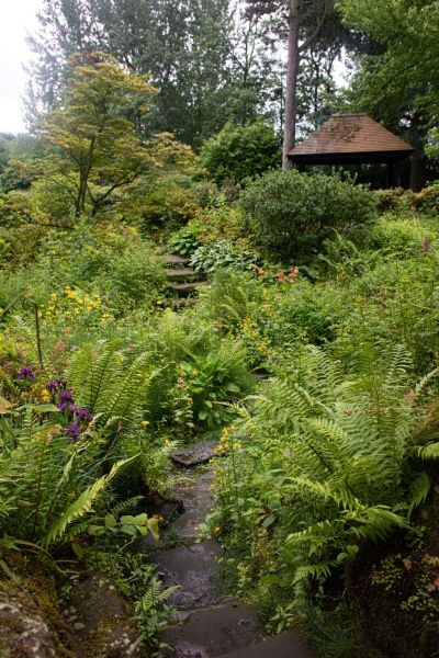 The Sandstone Rock Garden, photograph by Maggie Bucknall, The Week That Was, Digging for Dirt, Winterbourne House and Garden