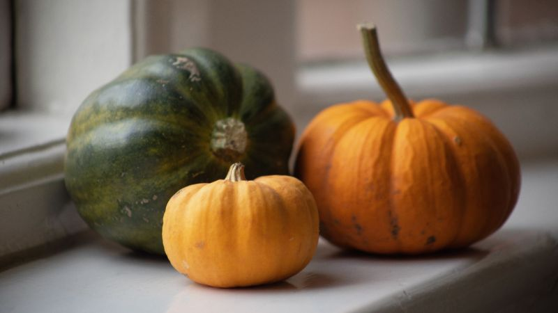 Squashes in the House, photograph by Maggie Bucknall, The Week That Was, Digging for Dirt, Winterbourne House