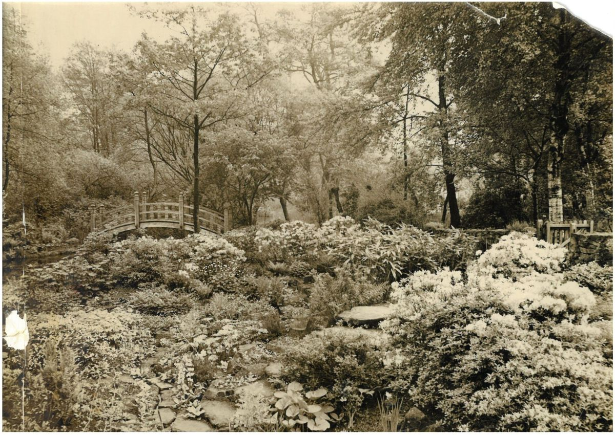 The Japanese Bridge photographed in the late-1930s, What's Happening Here?, Digging for Dirt, Winterbourne House and Garden