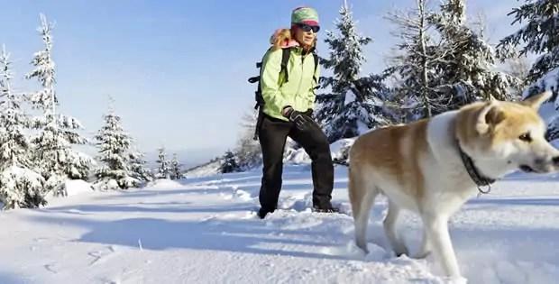 Met de hond naar de Wintersport