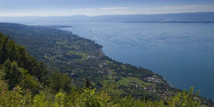 Vue-sur-le-lac-Leman-depuis-le-site-ornithologique-du-Hucel_format_1200x600