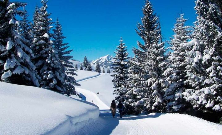 Winterwandelen kleinwalsertal