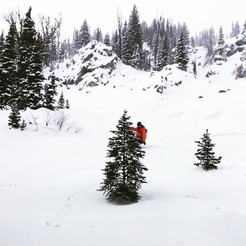 Storms are rolling in to the west coast this week, time to get barreled!  We make some of the world's best powder shapes, allowing you to bring your pow day experience to the next level. Rider: @robkingwill @jacksonhole #winterstick #artoftheturn #snowboarding