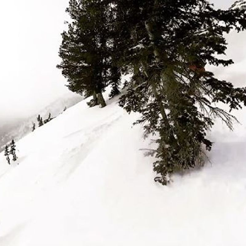 Surf is up at @jacksonhole right now!  @robkingwill enjoys the deep snow on his ARK 158 directional twin.  The ARK was designed to rip the terrain at Jackson Hole, with a playful sidecut, early rise nose and just a bit of taper. Available now at www.winterstick.com #winterstick #artoftheturn #sniwboarding  Video by @this_is_us_in