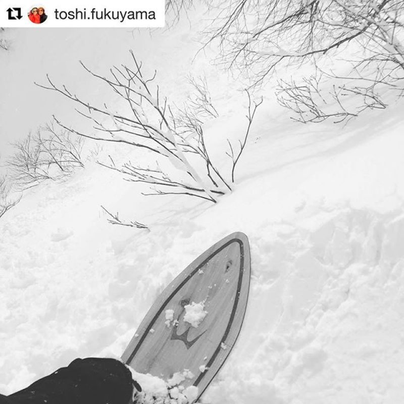 Meanwhile in Japan...... #wintersticking #tjbrand #wintersticksnowboards #swallowtail158flat#lottearairesort🏻 🕺 📸 @toshi.fukuyama