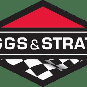 Engines & Parts (Briggs)