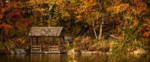 L'autunno è una seconda primavera, quando ogni foglia è un fiore.
