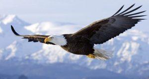 L'Iperpotenza Americana – Le Storie di Ieri