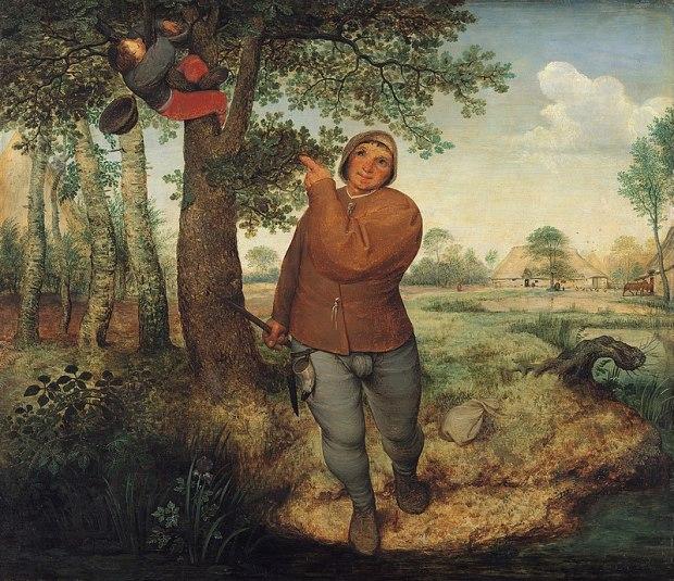 ladro di nidi
