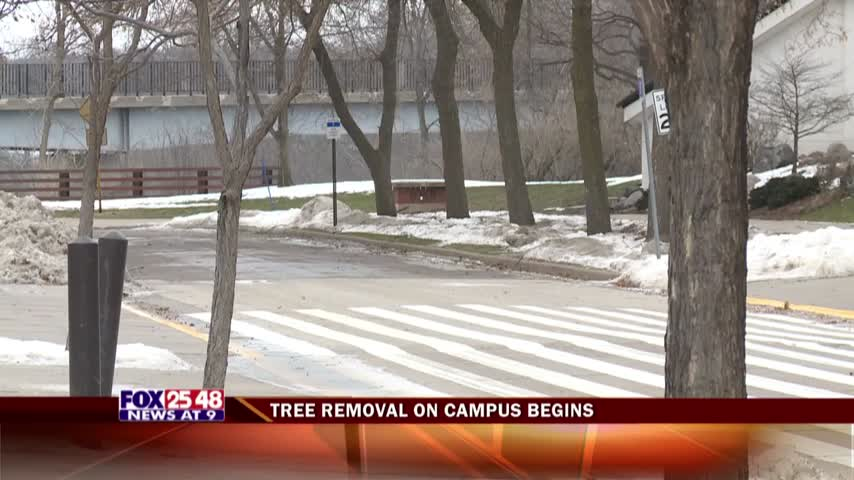 Tree Removal Begins at UW-Eau Claire_92592769