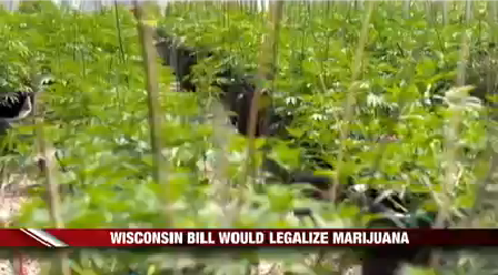 Marijuana Legislation_1499998488058.png