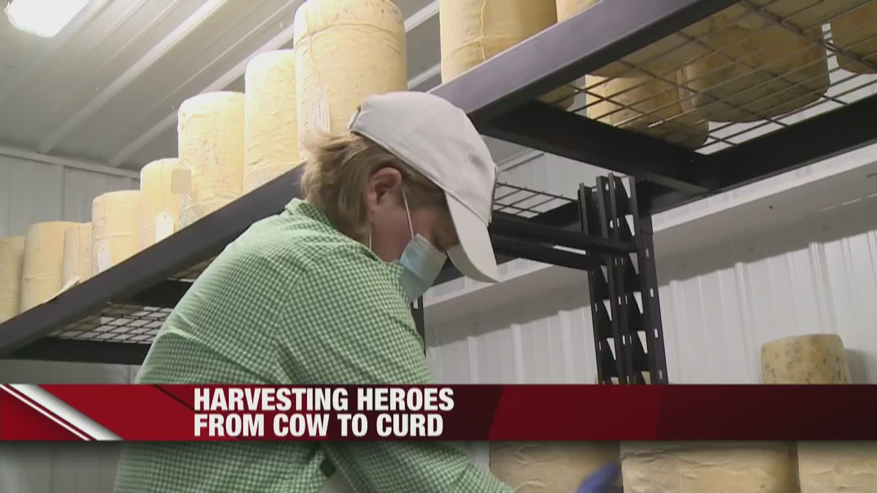 Harvesting Heroes Inga Witscher's Farm, satisfying the state's craving