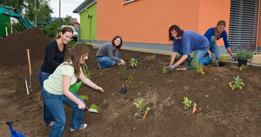 Guntersblumer schaffen kinderfreundliche Umwelt