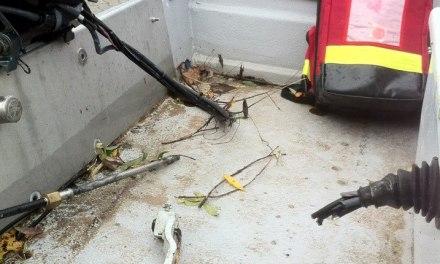 DLRG Nackenheim wurde wieder Opfer von Diebesbande