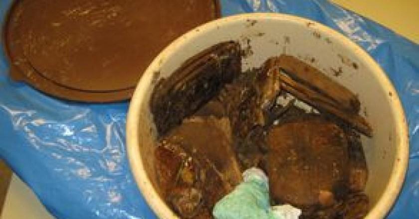 Fast drei Kilo Hasch im Lennebergwald gefunden