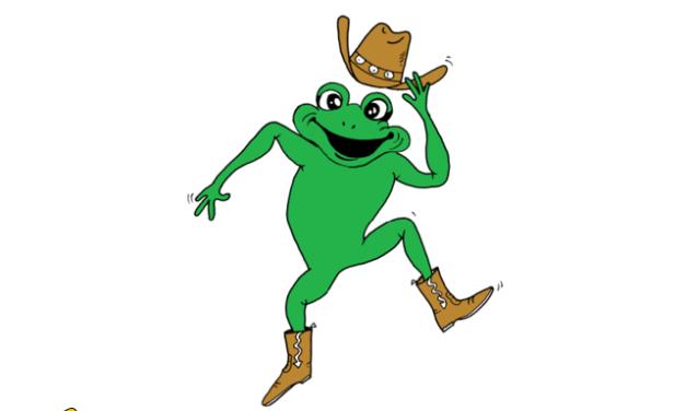 3. Line Dance Party der Country Frogs vom TV 03 Selzen ein voller Erflog