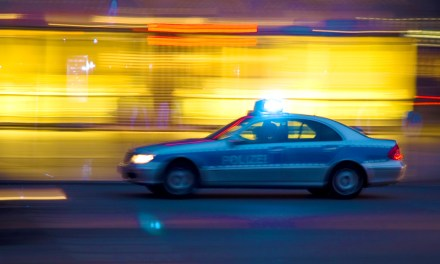 Betrunkener Autofahrer aus Alsheim verletzt Polizisten
