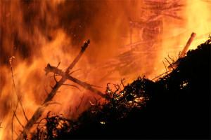 Tolles Osterwetter wird mit erhöhter Waldbrandgefahr erkauft