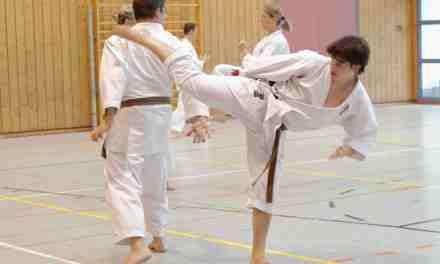 Karate-Lehrgang: Schnellkraft und Bescheidenheit