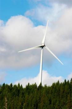 Petition gegen die wachsende Zahl von Windrädern