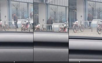 Mann tritt kleinen Hund beim Aldi in Oppenheim