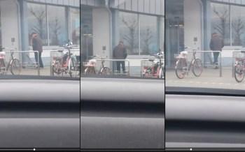Ein Mann tritt mehrfach einen wehrlosen kleinen Hund beim Aldi in Oppenheim.
