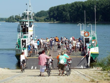Elektrofähre soll 2016 über den Rhein zum Kühkopf schippern