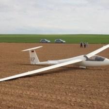Pilot und Segelflugzeug haben die Notlandung unbeschadet überstanden.. (Bild: Polizei Worms)