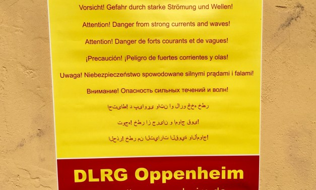 DLRG-Schild warnt in neun Sprachen vor Gefahren des Rheins
