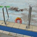 DLRG Oppenheim startet Podcast zur Schließung des Hallenbades