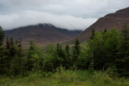 Gros-Morne-Tablelands14